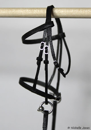BlackBridle_After