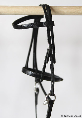 BlackBridle_Before