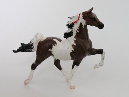 CM Saddlebred