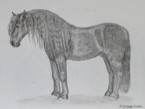 Drawing_BlackHorse