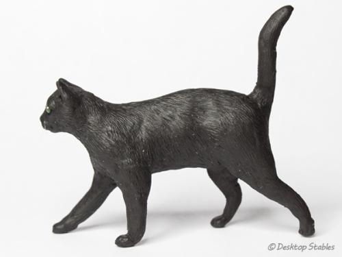 BlackCat05