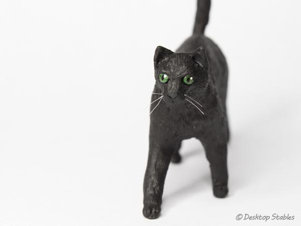 BlackCat09