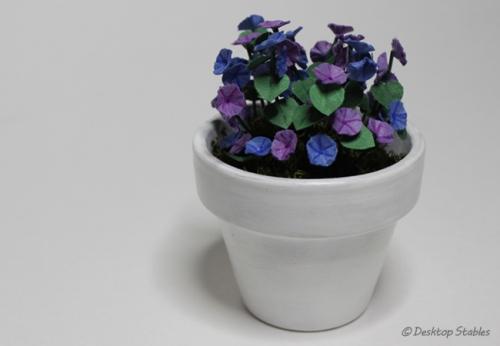 Petunias_02