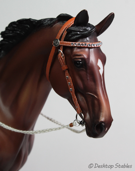 TanBridle01