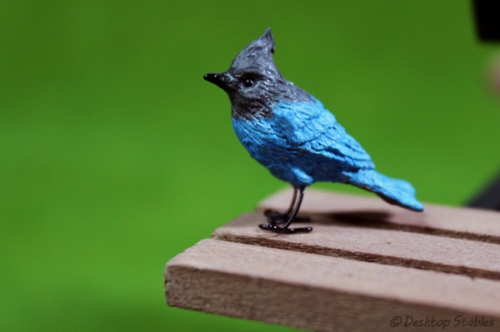 Birds014
