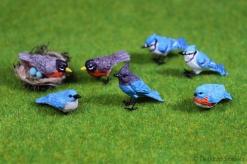 Birds015