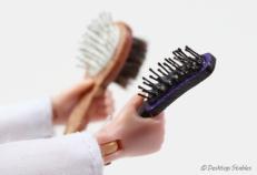 Brushes02