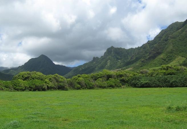 Oahu010