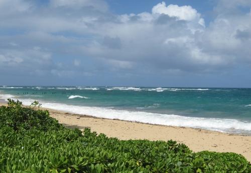 Oahu012